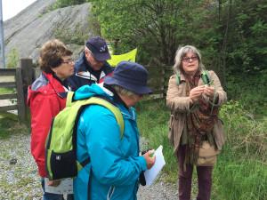 Natur för skräckslagna 30 maj. Foto Karin Haby.